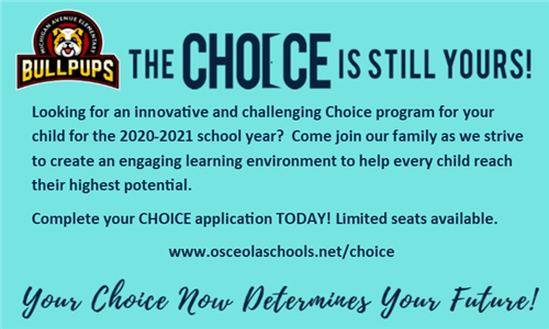 banner for choice schools ad